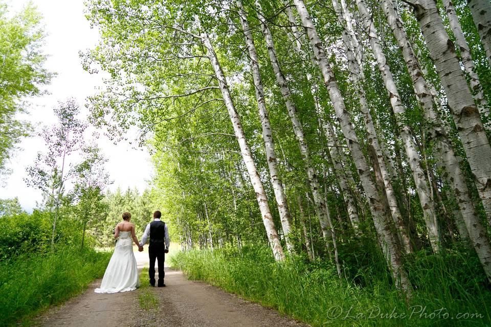 Aspen Grove Weddings