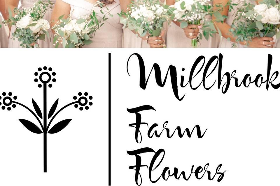 Millbrook Farm Flowers