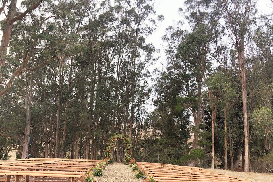 Waterfall Tree Ceremony Site