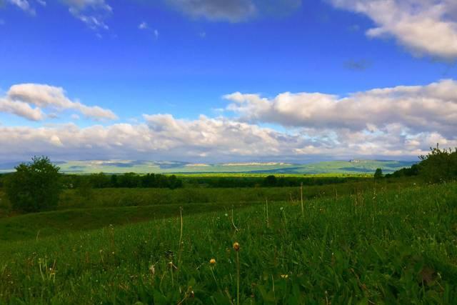 Liberty View Farm
