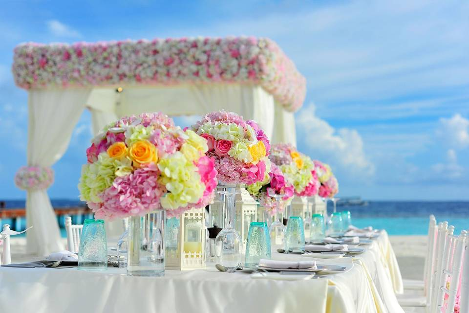 Loves Young Dream Weddings