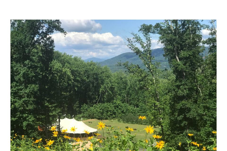 The Tent & Terraces