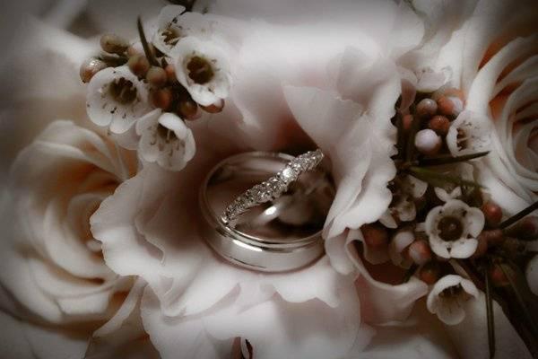 Treasures of the Shoebox Photography