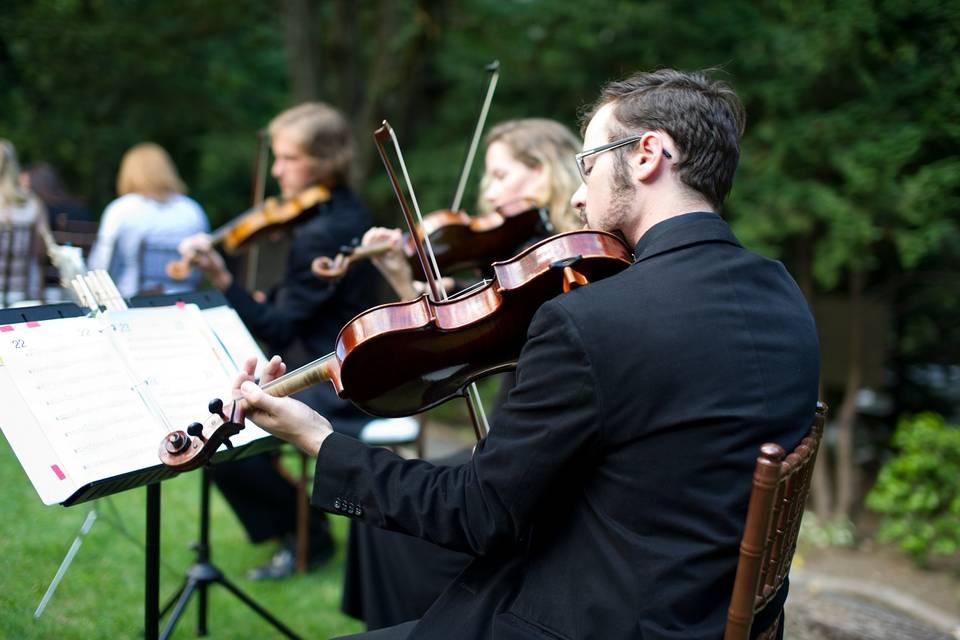 Puget Sound Strings