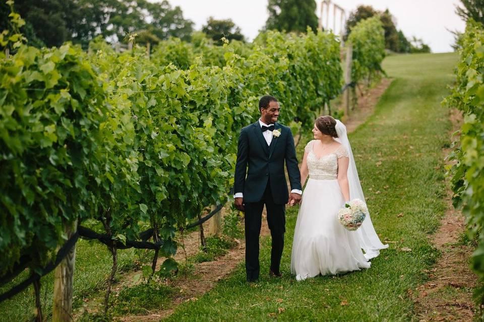 Couple among the vines