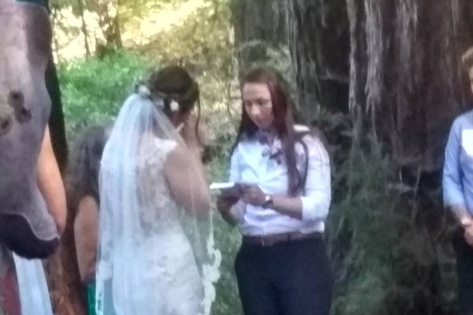 Gay wedding in the woods