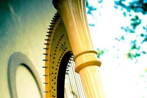 Trista Hill -- Harpist