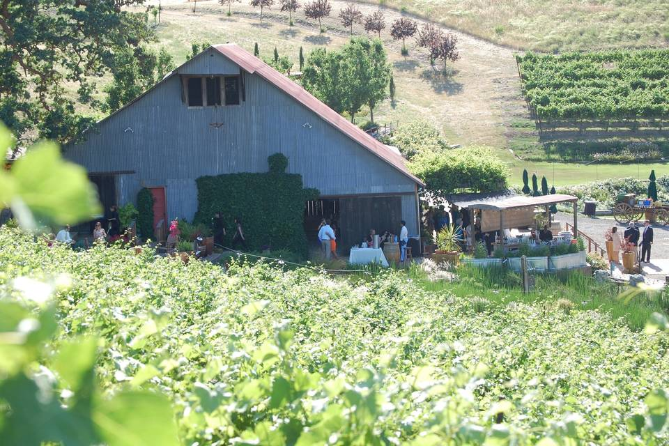 Taber Ranch Vineyards & Event Center