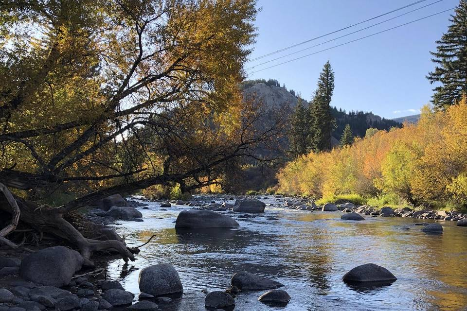 Beaver Creek Weeding