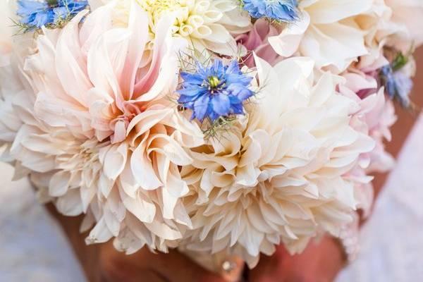 In Full Bloom by MJL