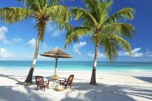 Blissful Honeymoons and Destination Weddings