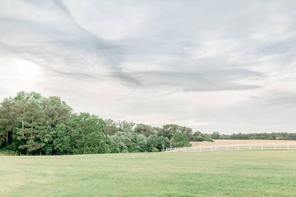 Paynefield Farm