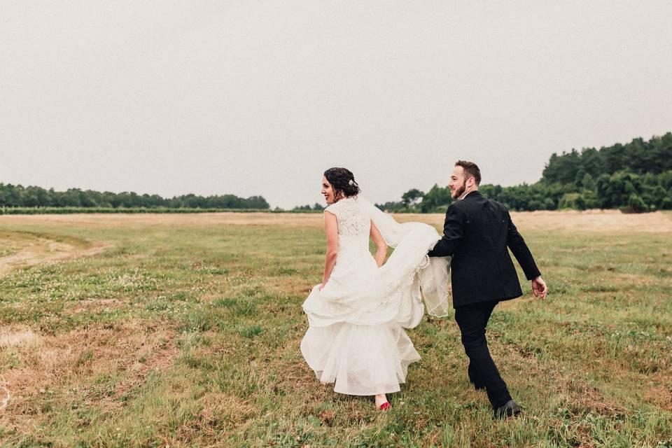 Amanda Roy Photography