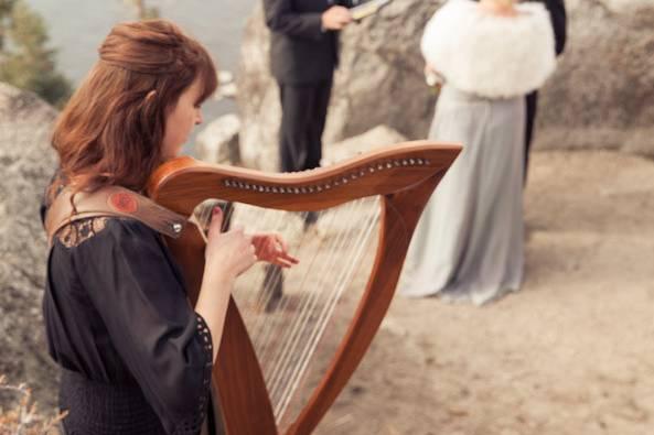Harpist at the wedding