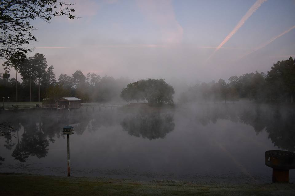 One foggy morning...