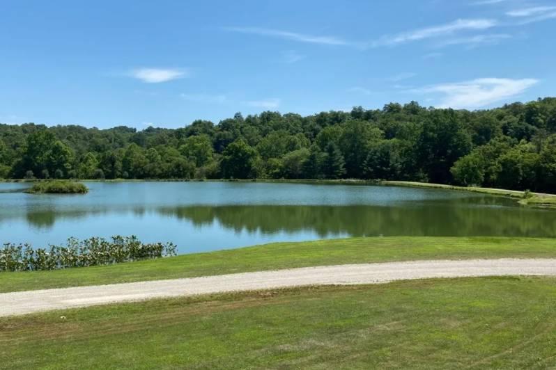 Fouts Lake view