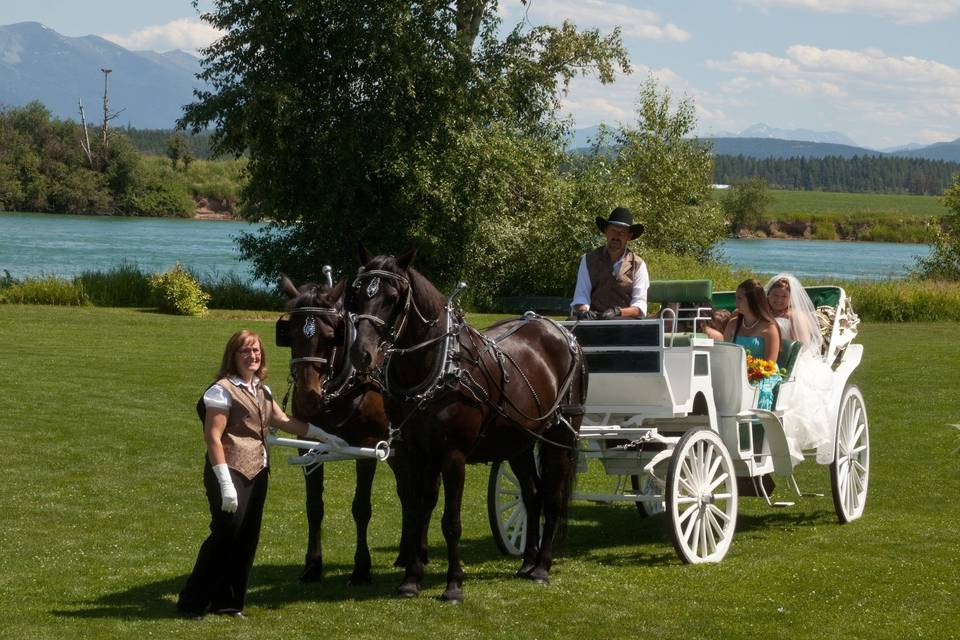 Cripple Creek Horse Ranch