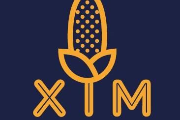 Xim logo
