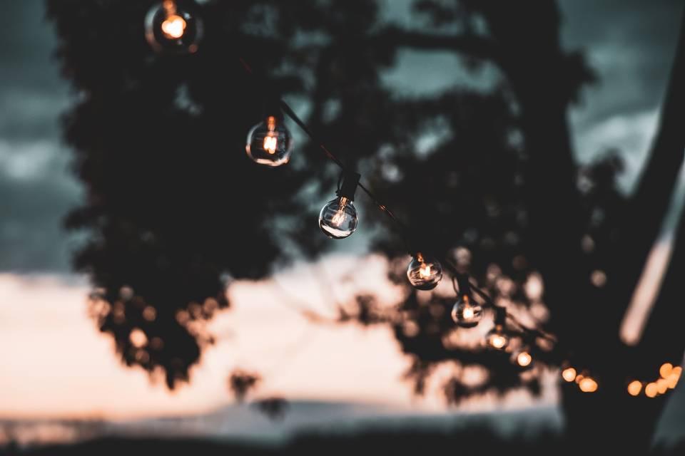 String lights sunset