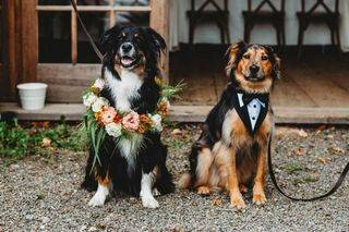 Custom Doggie Wreath