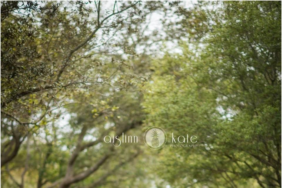 You and me - Aislinn Kate Photography