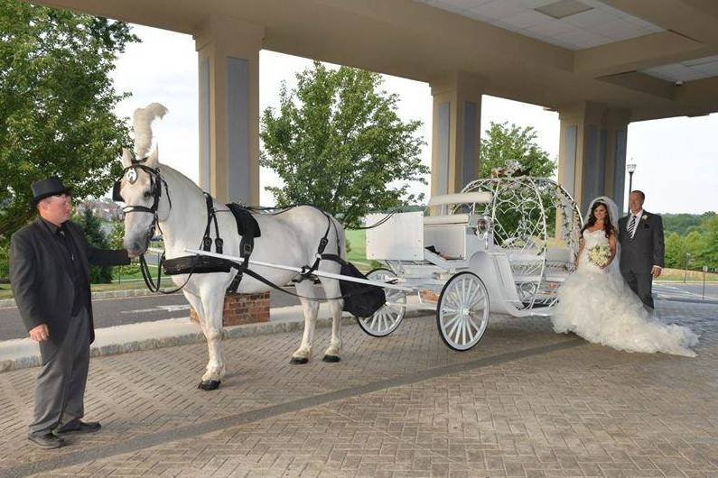 Dream Horse Carriage Company