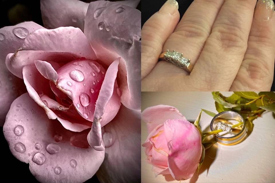 Wedding Rings & Roses