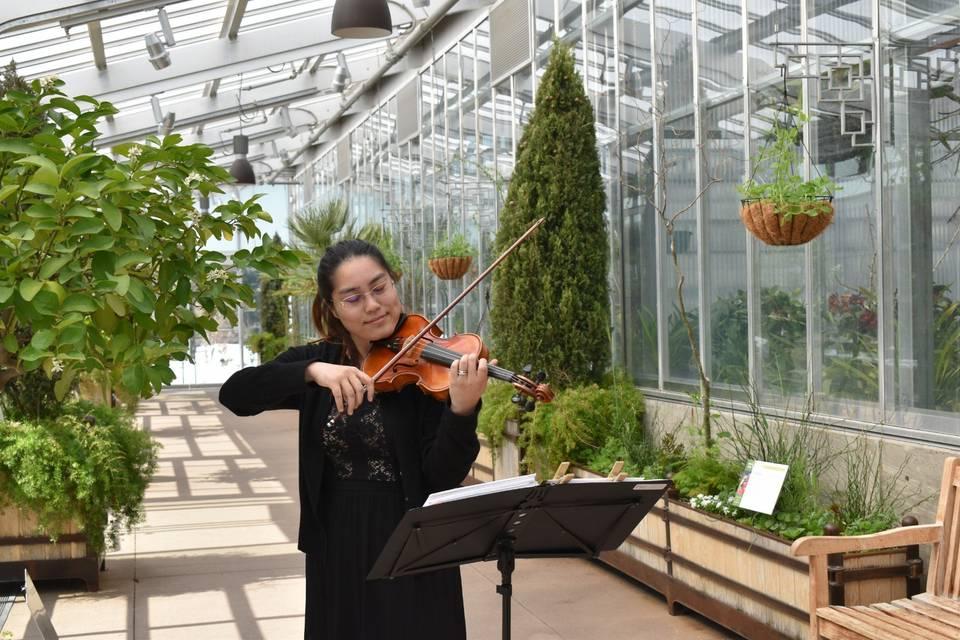 Wedding at Botanic Garden