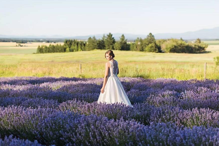 Lavender Manor