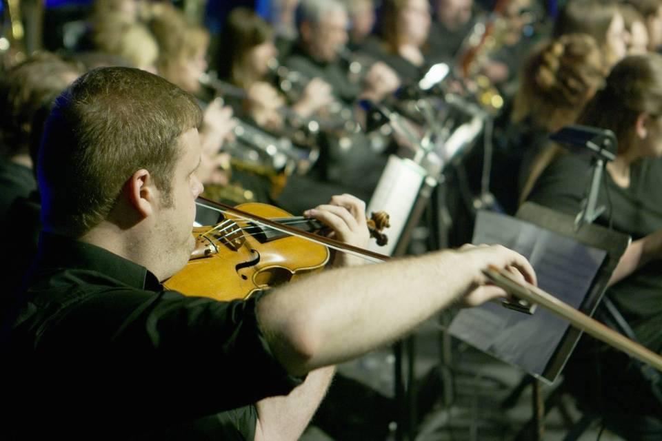 Andrew Paa-Violinist
