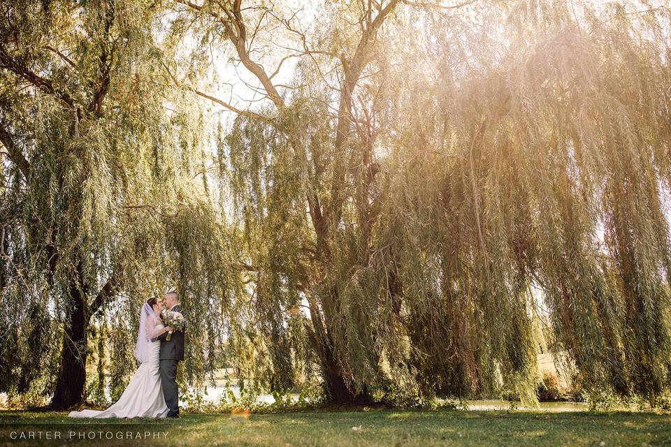 Couple by Willow Tree