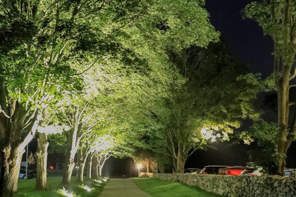 Light-lined driveway