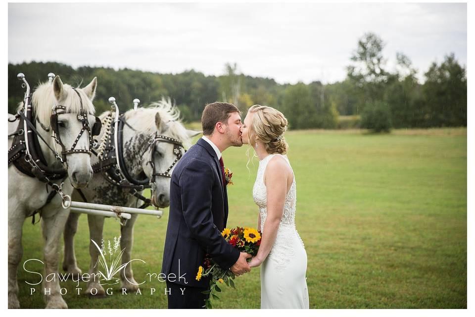 Horses, Beautiful wedding!