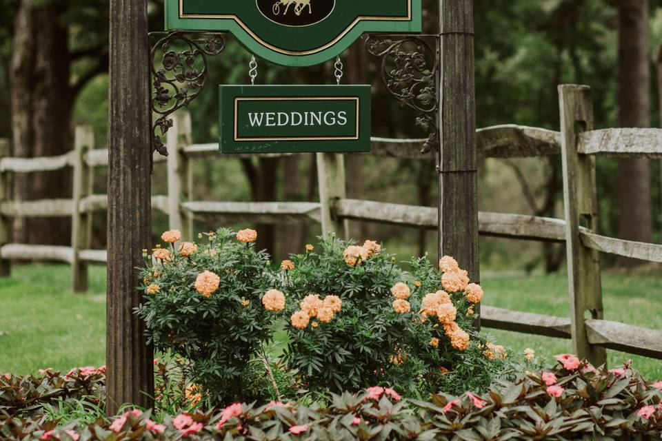 Welcome | YTK Photography and Film