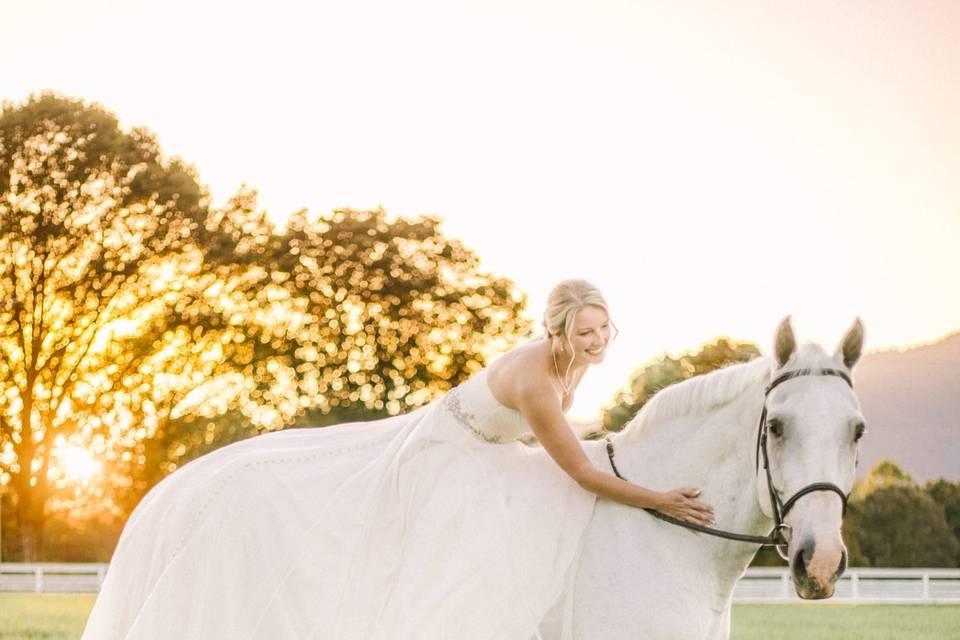 Equestrian Bridals