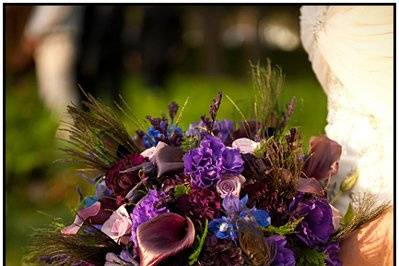 Bridal bouquet with deep purple calla lilies, roses, delphinium, lisianthus, carnations, and peacock feathers.