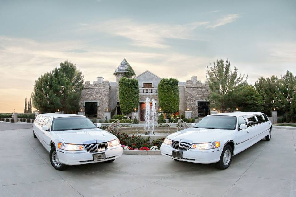 Arrive in Style Limousine