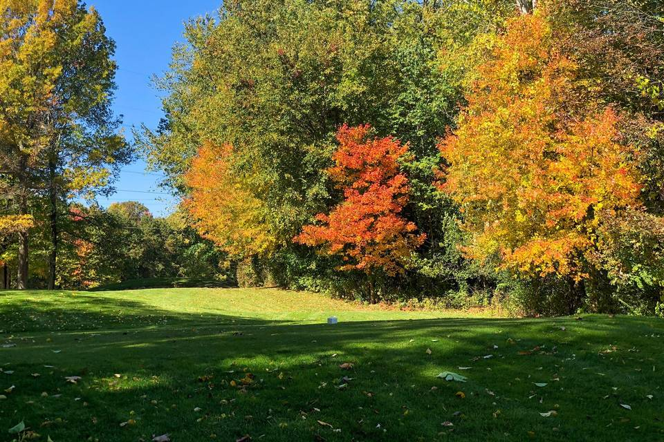 Fall Colors on the Course