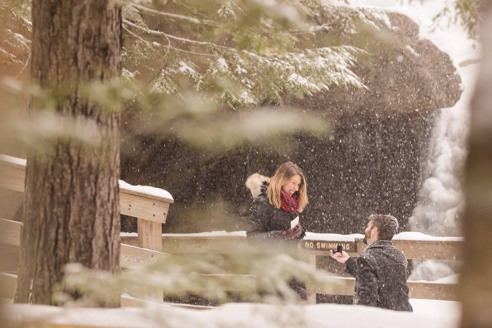 Wintery Proposal