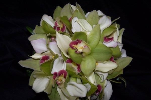 Green Cymbidium and Mini Calla bouquet