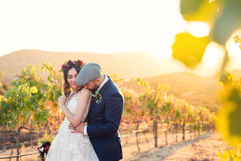 Vines | Corey Morgan