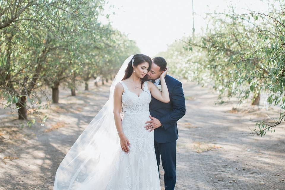 Snuggle in the orchards