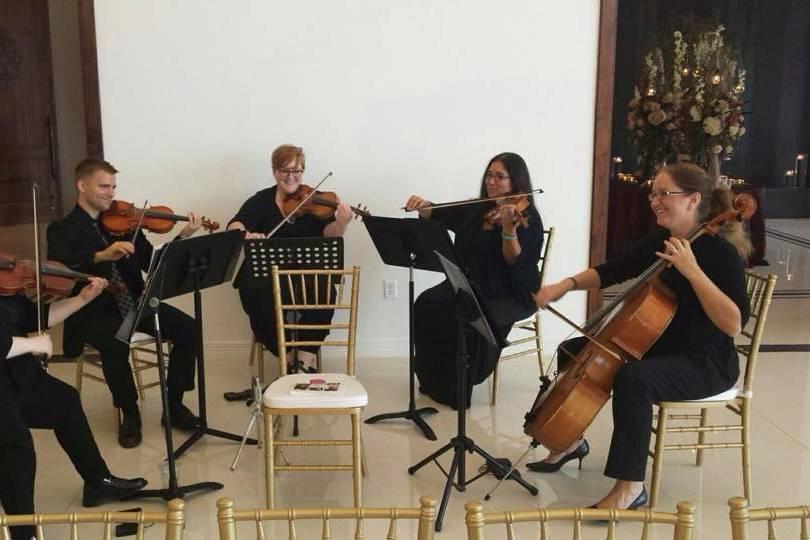 Third Floor Strings