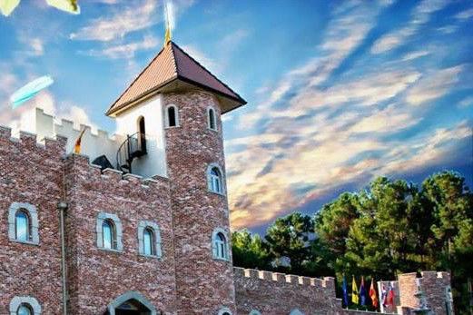 Pierce Castle