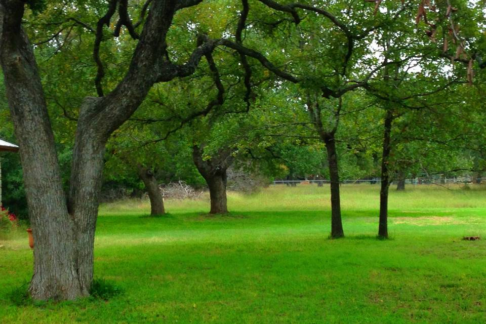 Hacienda Del Toro grounds