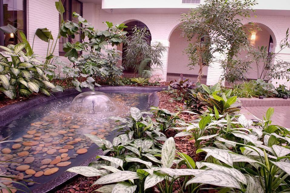 Indoor pond in the Atrium