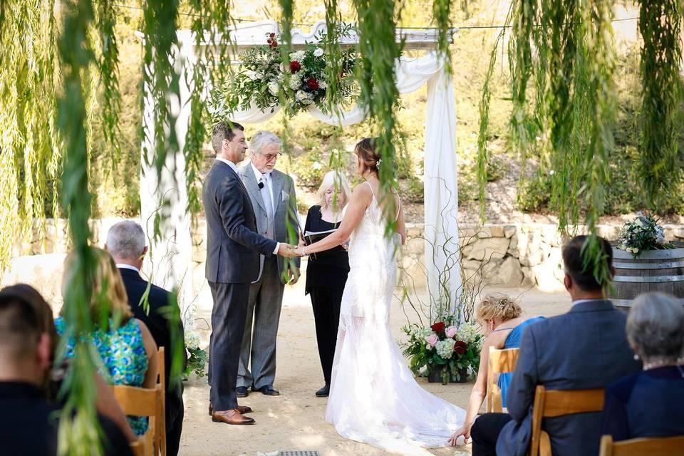 A great wedding at Tera Mia