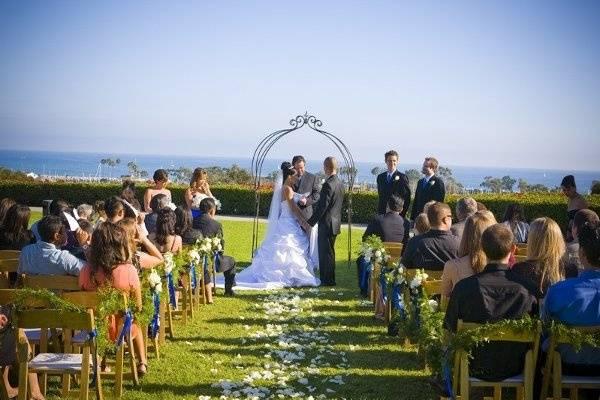 A Plus Size Wedding