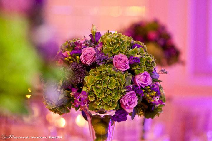 Topiary style centerpiece of lush green hydrangea and purple roses is complimented by fresh limes in the vase.