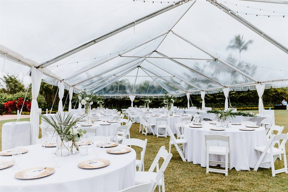 Great Lawn Clear Tent